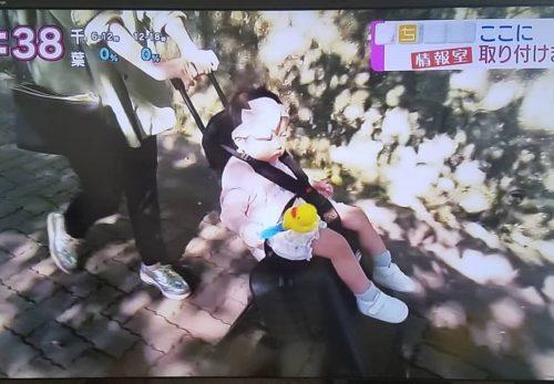 NHK「おはよう日本」まちかど情報室コーナーでマウンテンバギーバッグライダーが紹介されました